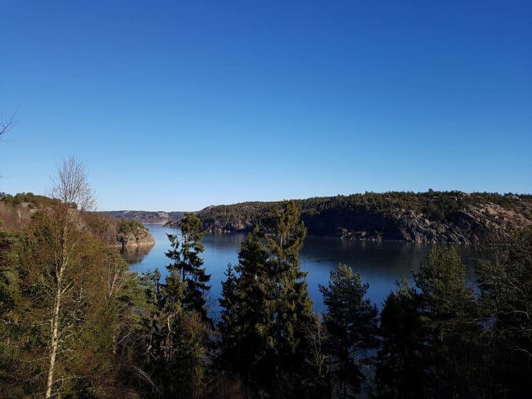 Fjorden på Nordens Ark. Foto: Therese Patriksson