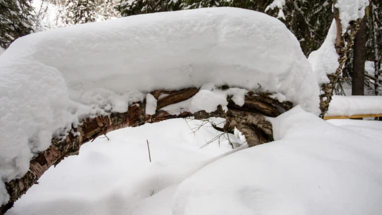 Fulufjäll Winter 5