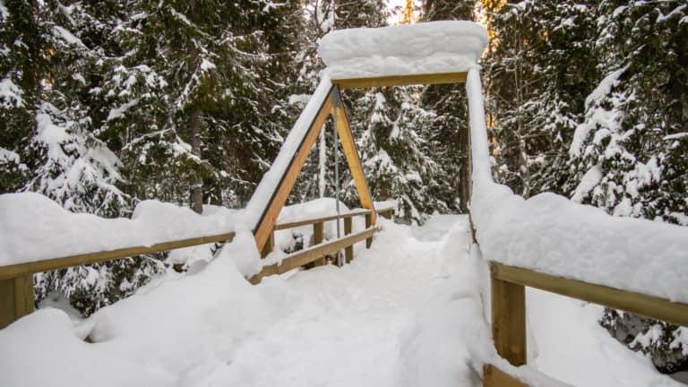 Fulufjäll Winter 6