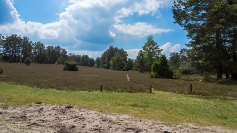 Misselhorner Heide 1