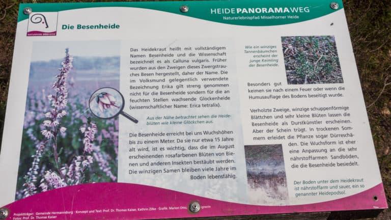 Misselhorner Heide 2