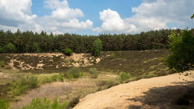 Misselhorner Heide 3