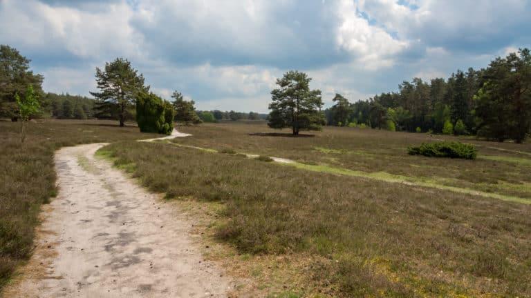 Misselhorner Heide 4
