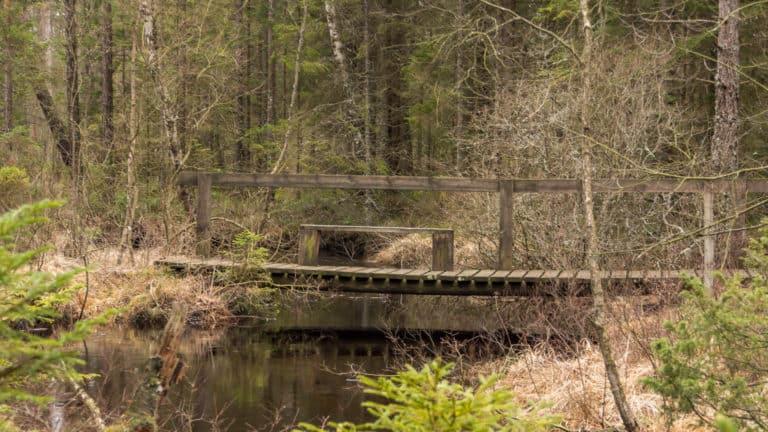 Die zweite Brücke