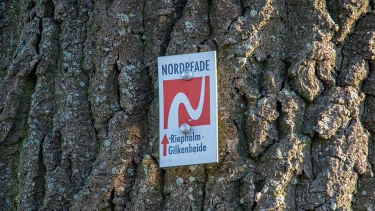 Wegmarkierung NP Riepholm-Gilkenheide
