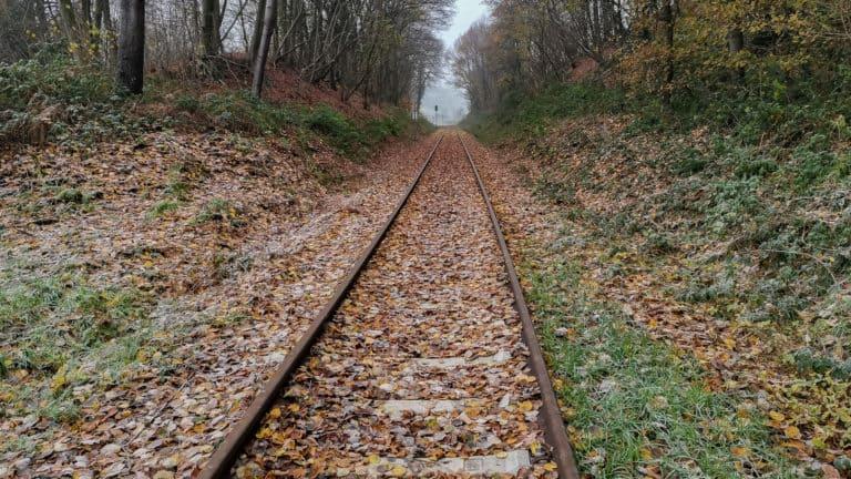 Bahngleis Teuto Express