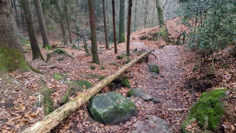 Steilstück Dreikaiserstuhl 1