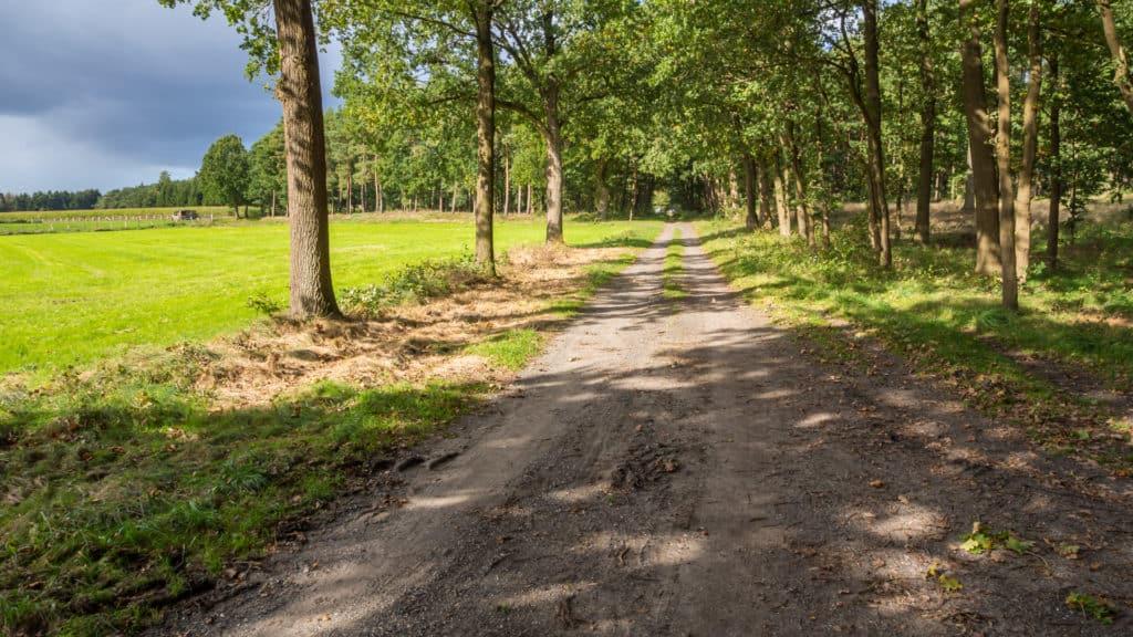 Weg zum Godenstedter Holz