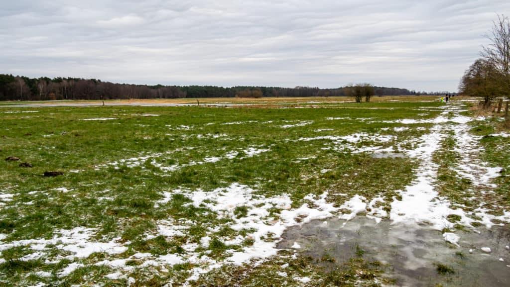 Überschwemmte Wümmewiesen 2