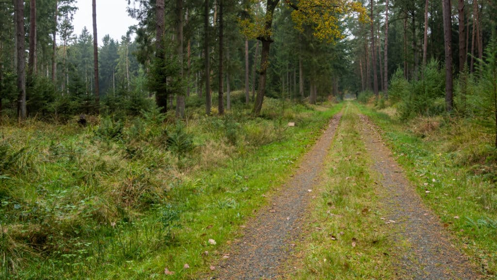 Nordpfad Hinzel 4