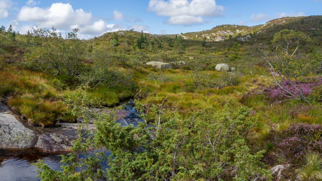 Berglandschaft 2