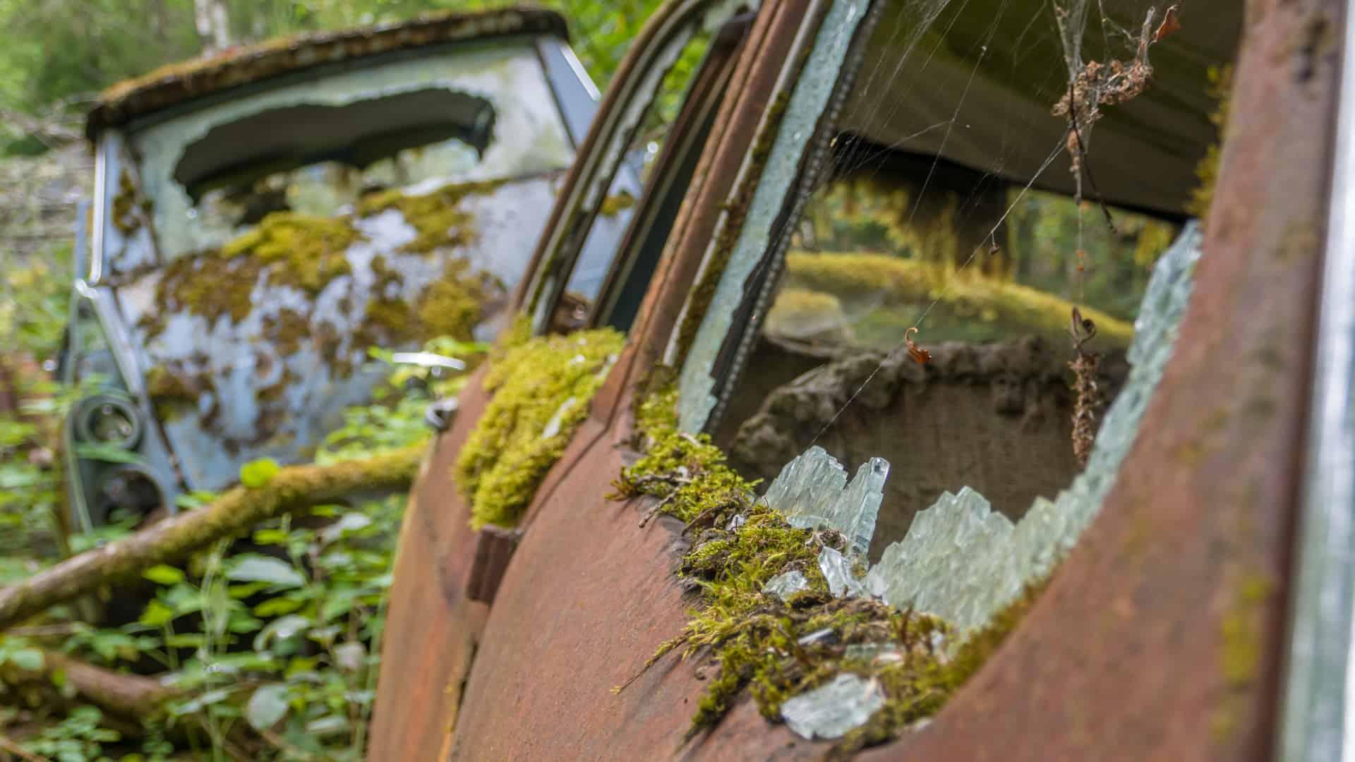 Autofriedhof Bastnäs 05
