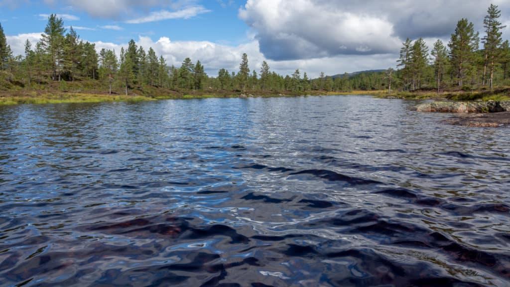 Beinsvatnet 1