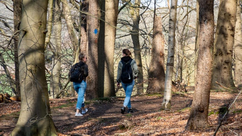 Abzweig Granstedter See 3