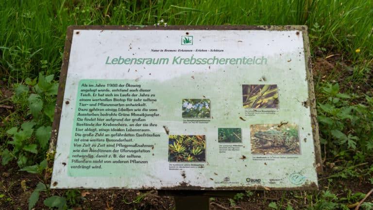 Werderland Rundweg 6