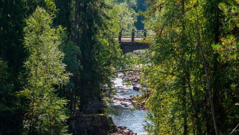 Bogenbrücke 1